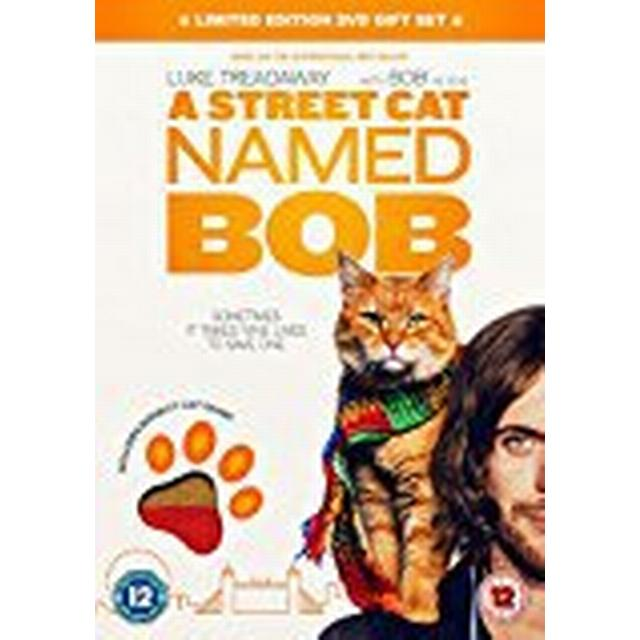 A Street Cat Named Bob (Cat Scarf Limited Edition) [DVD] [2016]